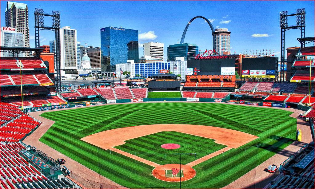 St Louis Cardinals Bush Turf