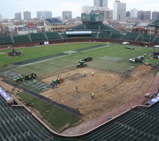 Bush Turf Rebuilds Wrigley Field
